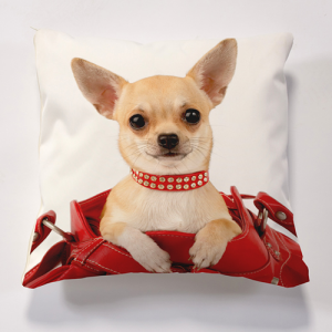 Iconic Chihauahua in Handbag  Cushions