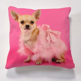 Iconic Pink Chihauahua Cushion Cushions
