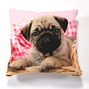 Iconic Pug in Basket Cushion Cushions