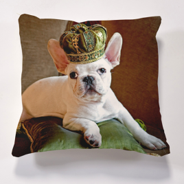 Iconic Frog Prince Cushion Personalise it for FREE Cushions