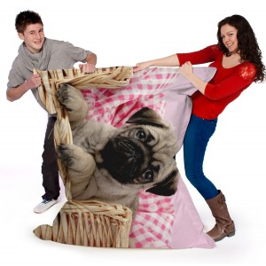 Cute Dogs Printed Beanbag
