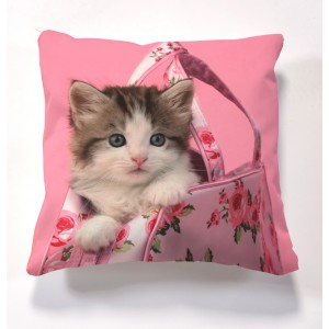 printed Kitten Cushion and cushion pad